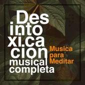 Desintoxicación musical completa de Musica para Meditar