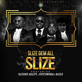 Slize Dem All de SLiZE