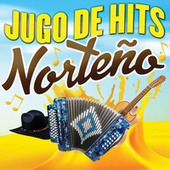 Jugo De Hits (Norteño) de Various Artists