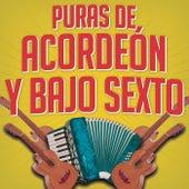 Puras Con Acordeón Y Bajo Sexto de Various Artists