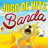 Jugo De Hits (Banda) de Various Artists
