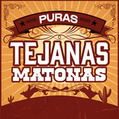 Puras Tejanas Matonas de Various Artists