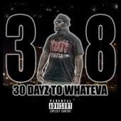 30 Dayz to Whateva by .38