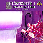 Through the F Hole (Abichestra Mix) de The Flowers Of Hell