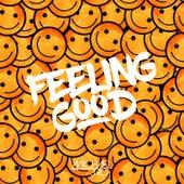Feeling Good by Michael J. Ro