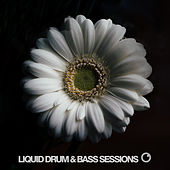Liquid Drum and Bass Sessions 2019 Vol 2 von Various Artists