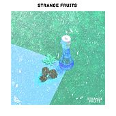 Meilleur Musique de Pop Belge 2019 de Strange Fruits; Top Pop Belgique 2019 de Various Artists