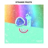 15 bài hát EDM hàng đầu lắng nghe nỗi nhớ không nhàm chán của Strange Fruits: nhạc điện tử gây nghiện tốt nhất von Various Artists