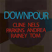 Downpour by Nels Cline