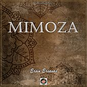 Mimoza von Ersin Ersavas