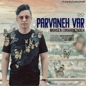 Parvaneh Var by Mohsen Ebrahimzadeh