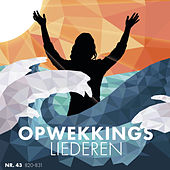 Opwekkingsliederen 43 (820-831) (Live at Opwekking Worship Weekend, 22-24 March 2019) by Stichting Opwekking