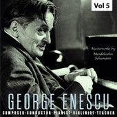 George Enescu: Composer, Conductor, Pianist, Violinist & Teacher, Vol. 5 (Live) de Various Artists