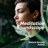 Meditation Soundscape de Nature Sounds Artists