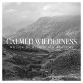 Calmed Wilderness de Musica de Relajación Academy