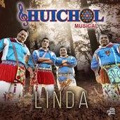Linda by Huichol Musical