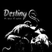 Destiny de Domino