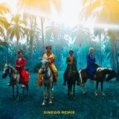 Playa Grande (Sinego Remix) de Sofi Tukker