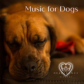 Music for Dogs by Various Artists