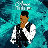 I Should Have by Amos