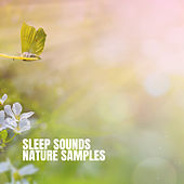 Sleep Sounds: Nature Samples by Various Artists