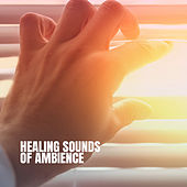 Healing Sounds of Ambience by Various Artists