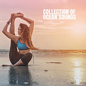 Collection of Ocean Sounds by Various Artists
