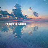 Peaceful Study von Various Artists