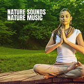 Nature Sounds Nature Music de Various Artists