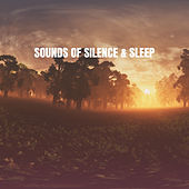Sounds of Silence & Sleep by Various Artists