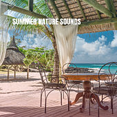 Summer Nature Sounds by Various Artists