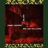 Piney Woods Blues (HD Remastered) by Big Joe Williams