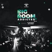 Bigroom Addicted Vol.6 de Various Artists