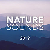 Nature Sounds 2019 - EP de Soothing Sounds