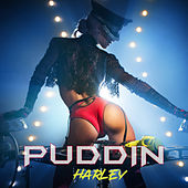 Puddin de Harley