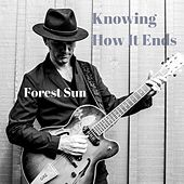 Knowing How It Ends von Forest Sun