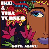 Soul Alive by Ike and Tina Turner