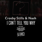 I Can't Tell You Why (Live) de Crosby, Stills and Nash