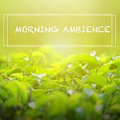 Morning Ambience by Nature Sounds (1)