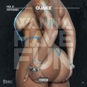 Wanna Have Fun by Quake