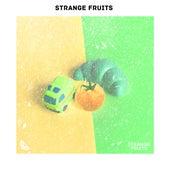 Nhạc Điện Tử Leo Rank Cho Game Thủ! By Strange Fruits von Various Artists