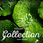 Focused Rain Collection de Rainmakers