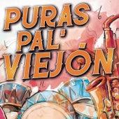Puras Pal' Viejón de Various Artists