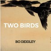 Two Birds de Bo Diddley