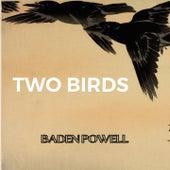 Two Birds von Baden Powell