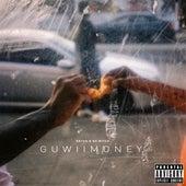 GuWiiMoney by Various Artists