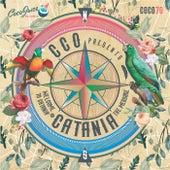 Catania - Single von Cco