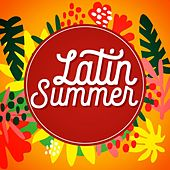 Latin Summer de Various Artists