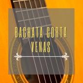 Bachata Corta Venas fra Various Artists