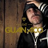 Raíz de Guanaco